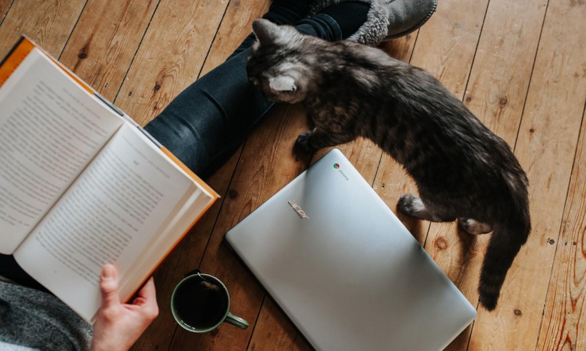 Mutasd, mit olvastál! – rövid irodalomterápiás segítő csomag otthonra